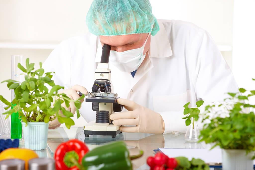 Gıda Mühendisliği - Mühendislik Fakültesi - İstanbul Okan Üniversitesi