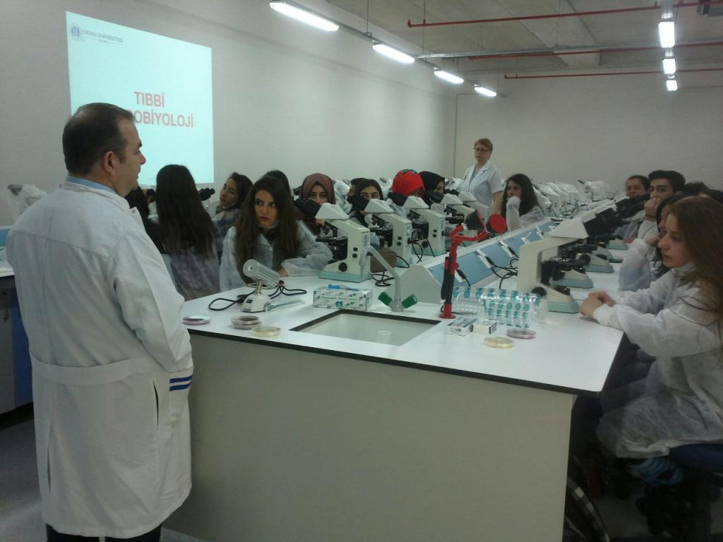 medical microbiology laboratory